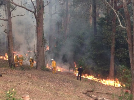 073-sydney-bushfire-emergency-october-17